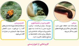 پاسخ فعالیت های درس ششم انسان و محیط زیست یازدهم