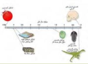 پاسخ فعالیت های فصل اول زمین شناسی یازدهم